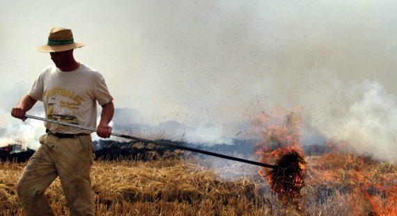 Agricultor quemando paja de arroz