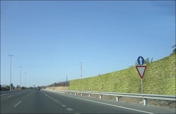 Nuevas pantallas acústicas vegetales instaladas en una autovía de Las Palmas de Gran Canaria. / UPM
